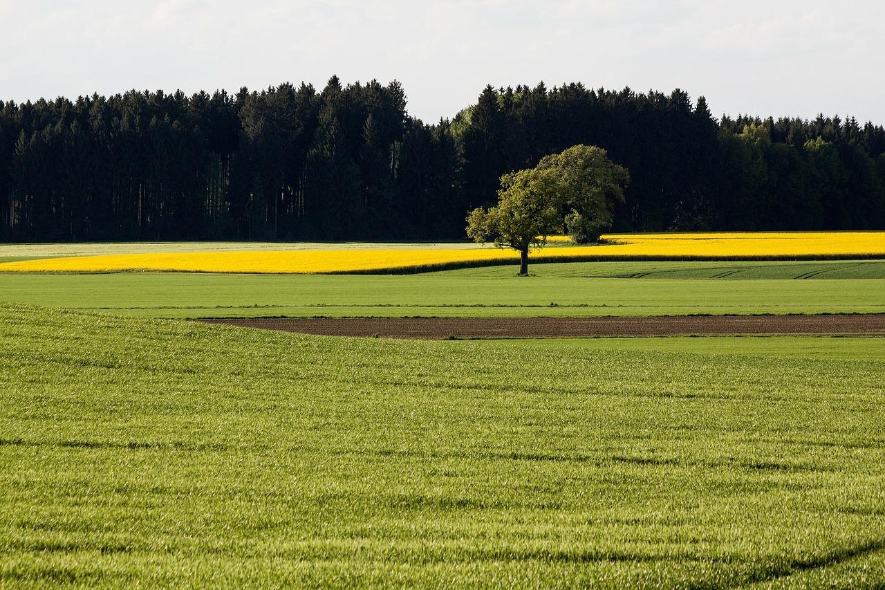 Un logiciel agricole gratuit pour gérer votre exploitation